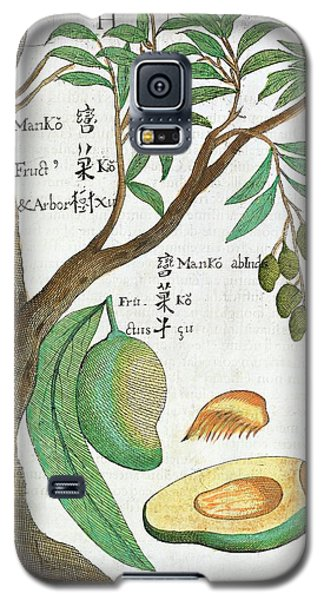 Mango Tree And Fruit Galaxy S5 Case by Natural History Museum, London