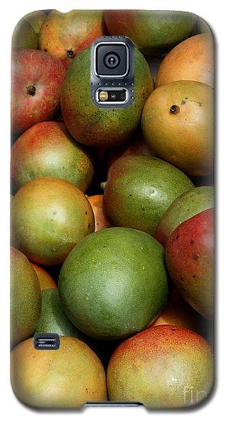 Mangoes Galaxy S5 Case by Carol Groenen