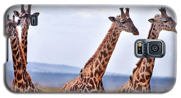 Masai Giraffe Galaxy S5 Case by Adam Romanowicz
