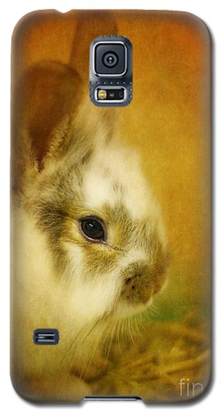 Memories Of Watership Down Galaxy S5 Case by Lois Bryan