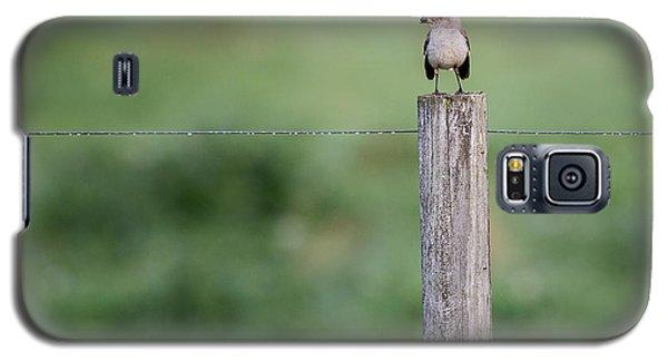 Minimalism Mockingbird Galaxy S5 Case by Bill Wakeley