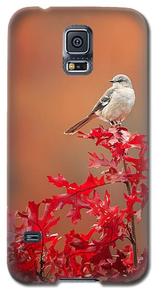 Mockingbird Autumn Galaxy S5 Case by Bill Wakeley
