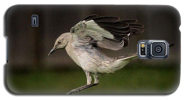 Mockingbird No. 2 Galaxy S5 Case by Rick Barnard