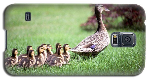 Mumma Duck And Kids Galaxy S5 Case by King Wu