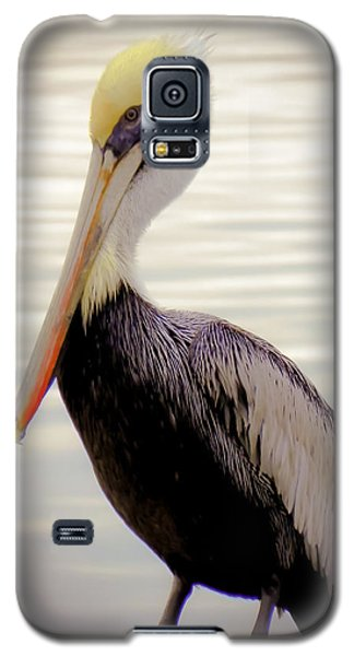 My Visitor Galaxy S5 Case by Karen Wiles