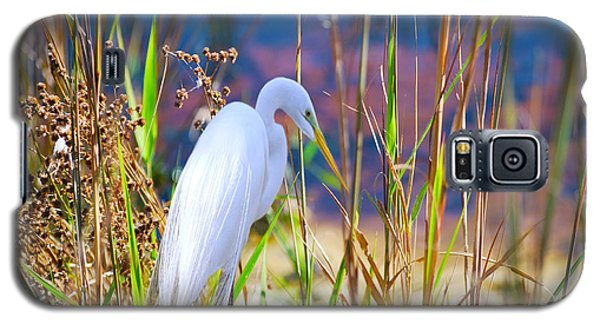 Natural Beauty Galaxy S5 Case by Adele Moscaritolo