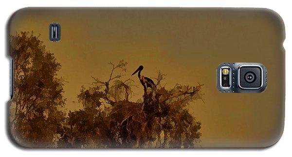 Nesting Jabiru  Galaxy S5 Case by Douglas Barnard