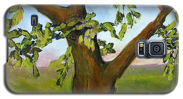 Nesting Tree Galaxy S5 Case by Blenda Studio