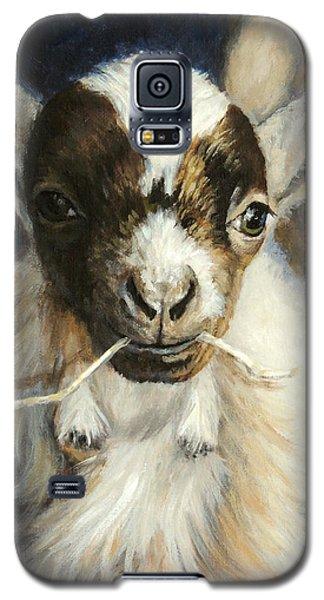 Nigerian Dwarf Goat With Straw Galaxy S5 Case by Dottie Dracos