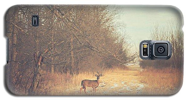 November Deer Galaxy S5 Case by Carrie Ann Grippo-Pike