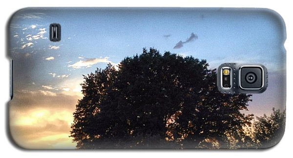 Landscapes Galaxy S5 Cases - Oak Tree at the Magic Hour Galaxy S5 Case by Angela Rath