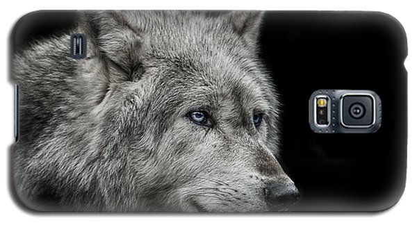Old Blue Eyes Galaxy S5 Case by Paul Neville