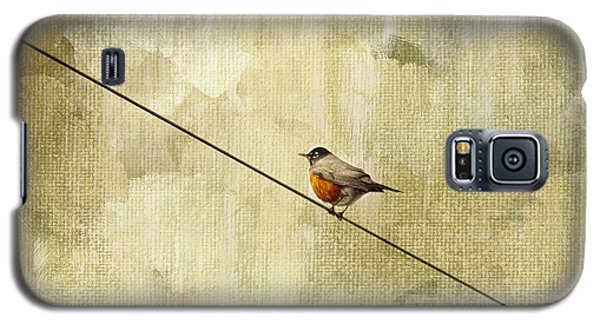 Bird Galaxy S5 Cases - On The Wire Galaxy S5 Case by Rebecca Cozart