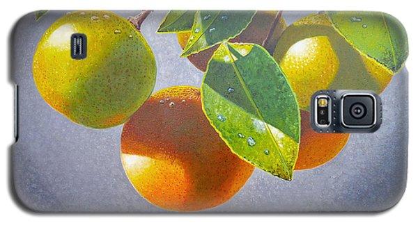 Oranges Galaxy S5 Case by Carey Chen
