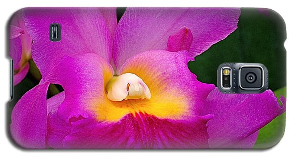Flower Galaxy S5 Cases - Orchid Variations 1 Galaxy S5 Case by Rona Black