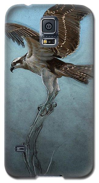 Osprey Galaxy S5 Case by Aaron Blaise
