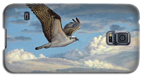 Osprey In The Clouds Galaxy S5 Case by Paul Krapf