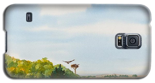 Ospreys On The Vineyard Watercolor Painting Galaxy S5 Case by Michelle Wiarda