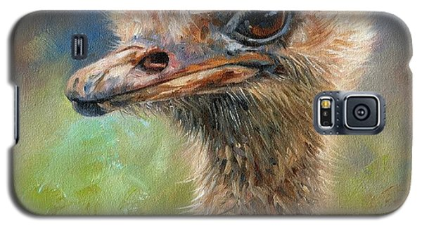 Ostrich Galaxy S5 Case by David Stribbling