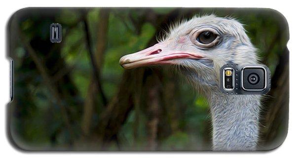 Ostrich Head Galaxy S5 Case by Aged Pixel