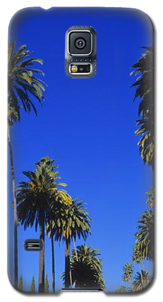 Palm Trees Along A Road, Beverly Hills Galaxy S5 Case by Panoramic Images