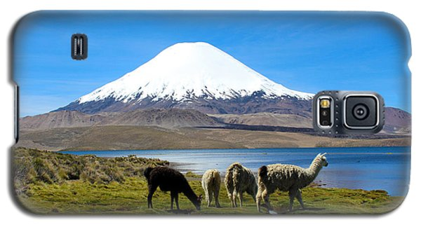 Parinacota Volcano Lake Chungara Chile Galaxy S5 Case by Kurt Van Wagner