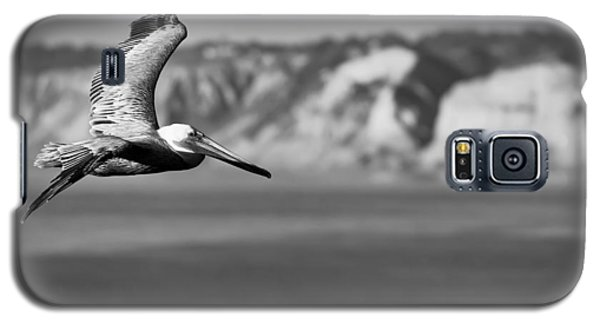 Pelican In Black And White Galaxy S5 Case by Sebastian Musial