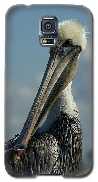 Pelican Profile Galaxy S5 Case by Ernie Echols