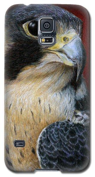 Peregrine Falcon Galaxy S5 Case by Pat Erickson