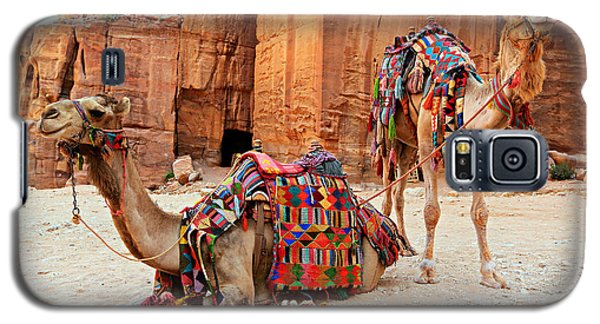 Petra Camels Galaxy S5 Case by Stephen Stookey