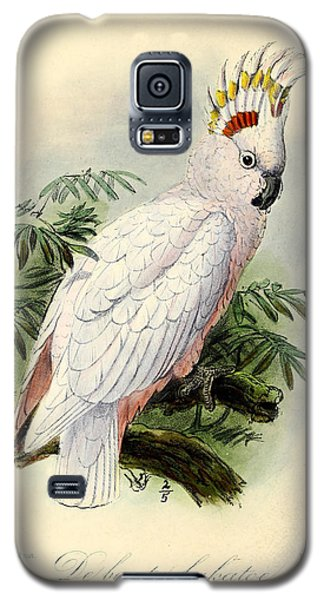Pied Cockatoo Galaxy S5 Case by J G Keulemans
