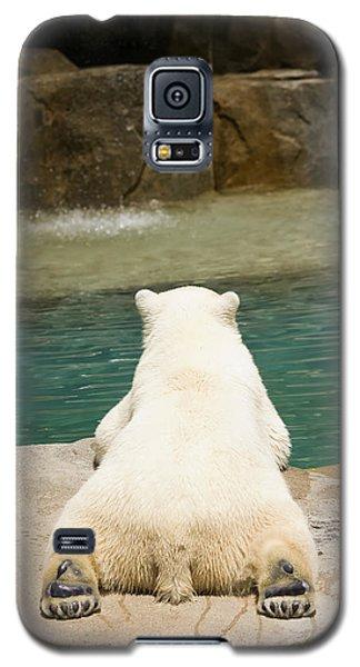 Playful Polar Bear Galaxy S5 Case by Adam Romanowicz