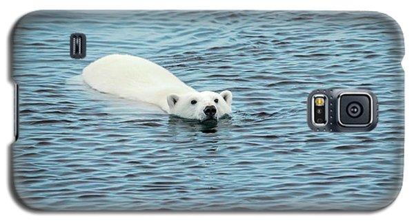 Polar Bear Swimming Galaxy S5 Case by Peter J. Raymond