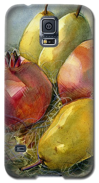 Pomegranates And Pears Galaxy S5 Case by Jen Norton