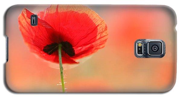 Flower Galaxy S5 Cases - Poppy Dream Galaxy S5 Case by Roeselien Raimond