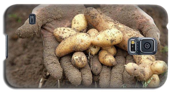 Potato Harvest Galaxy S5 Case by Jim West