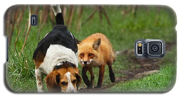 Probably The World's Worst Hunting Dog Galaxy S5 Case by Mircea Costina Photography