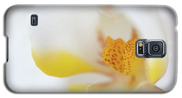 Yellow Galaxy S5 Cases - Pure White Galaxy S5 Case by Sebastian Musial