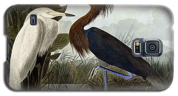 Purple Heron Galaxy S5 Case by John James Audubon