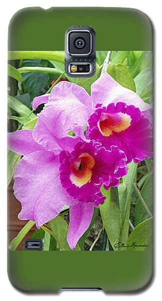 Purple Cattleya Orchids Galaxy S5 Case by Ellen Henneke