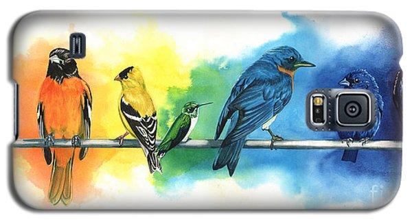 Animals Galaxy S5 Cases - Rainbow Birds Galaxy S5 Case by Antony Galbraith