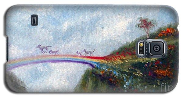 Architecture Galaxy S5 Cases - Rainbow Bridge Galaxy S5 Case by Stella Violano
