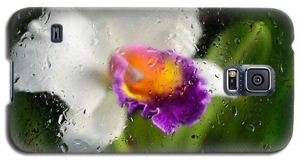 Rainy Day Orchid - Botanical Art By Sharon Cummings Galaxy S5 Case by Sharon Cummings