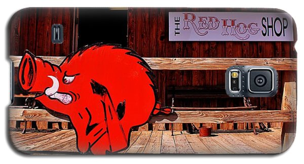 Razorback Country Galaxy S5 Case by Benjamin Yeager