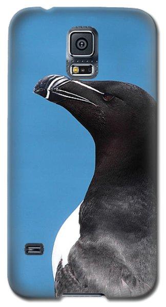 Razorbill Profile Galaxy S5 Case by Bruce J Robinson