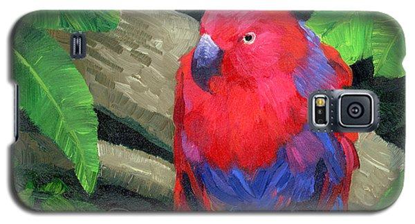 Red Bird Galaxy S5 Case by Alice Leggett