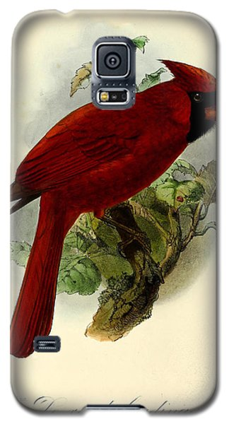 Red Cardinal Galaxy S5 Case by J G Keulemans