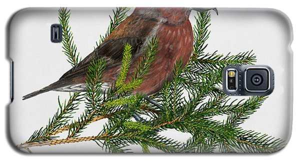 Red Crossbill -common Crossbill Loxia Curvirostra -bec-crois Des Sapins -piquituerto -krossnefur  Galaxy S5 Case by Urft Valley Art