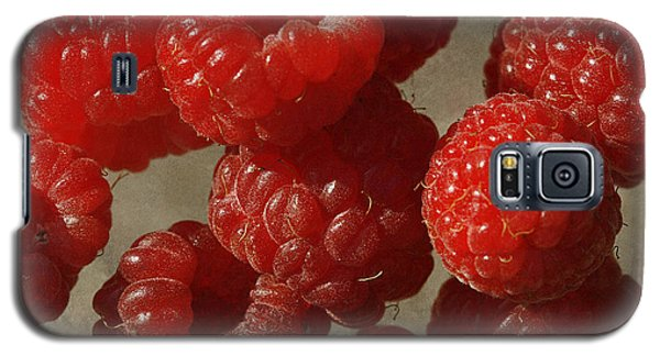 Red Raspberries Galaxy S5 Case by Cindi Ressler