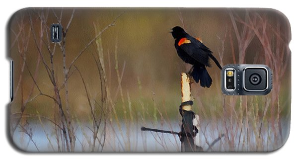 Red Winged Blackbird 2 Galaxy S5 Case by Ernie Echols